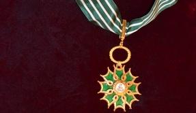Pierre Perret fait Commandeur de l'Ordre des Arts et des Lettres